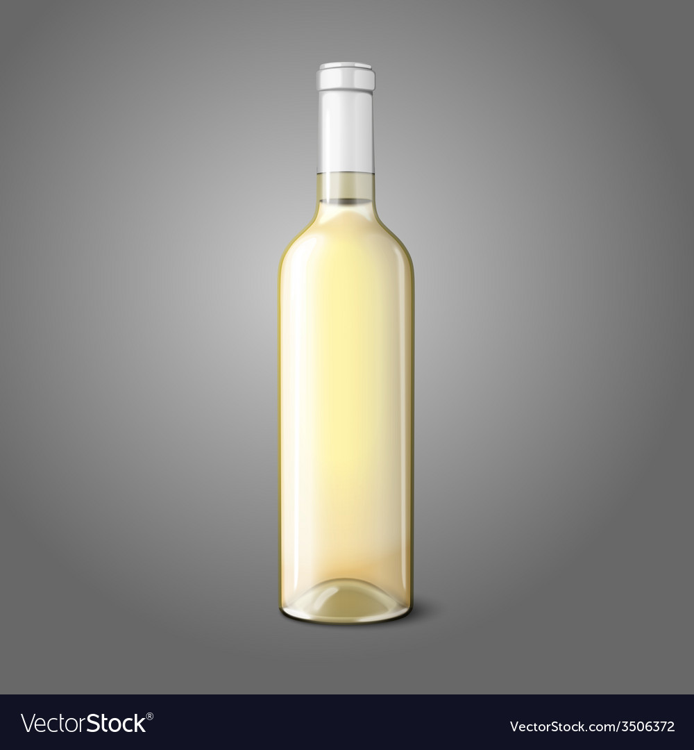 Blank realistic bottle for white wine vector image