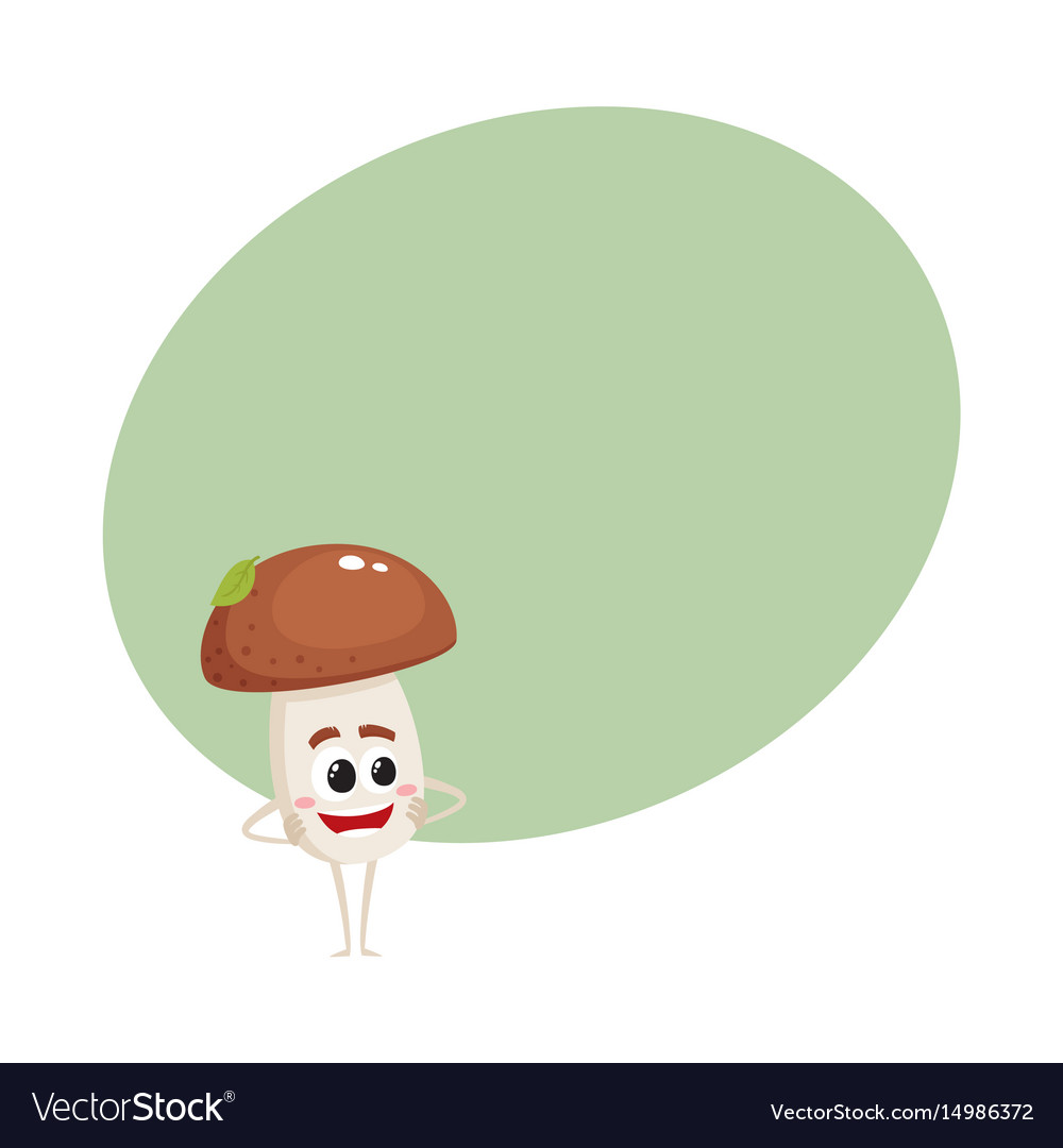 Funny porcini mushroom character with smiling face
