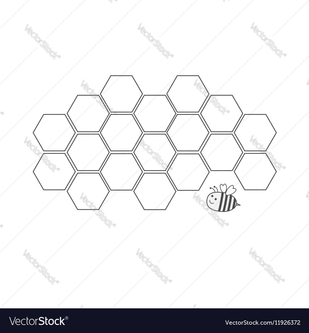 Honeycomb set Beehive element Honey icon Bee vector image