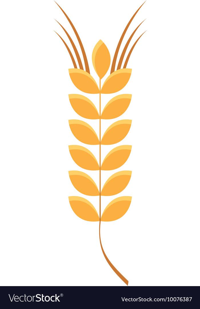 Spike leaf frame icon