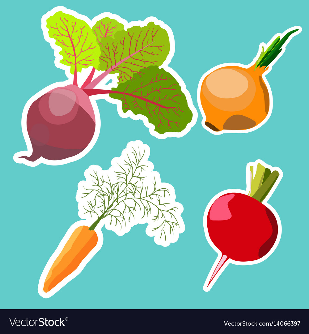 Set of flat cartoon vegetables stickers