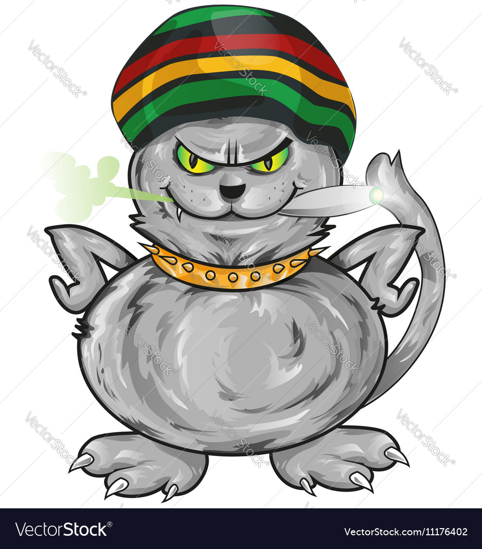 Fun jamaican angry cat