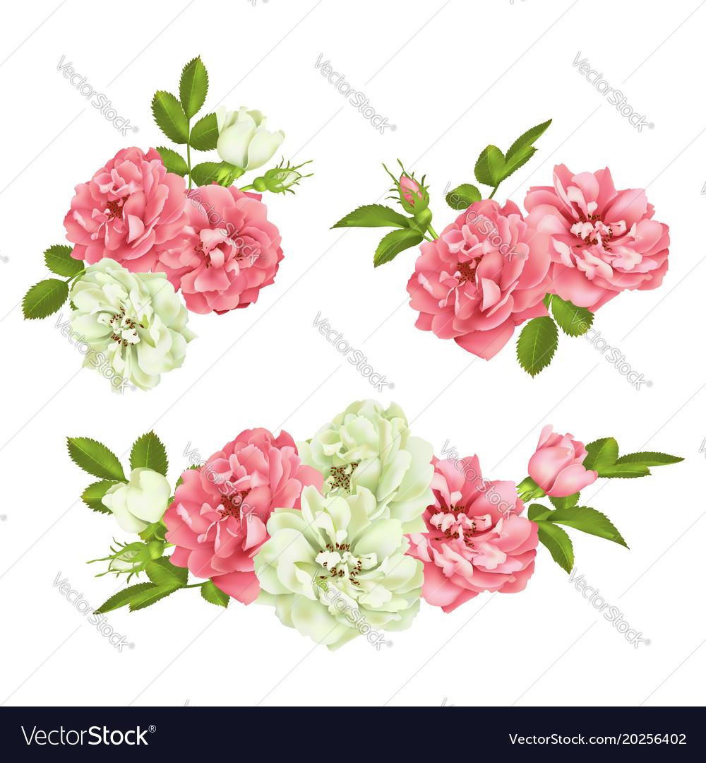 Realistic pink rose set 3d roses