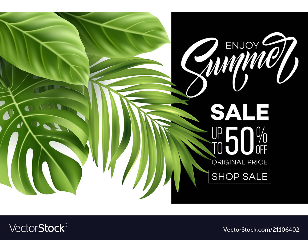 Sale banner poster with palm leaves jungle leaf