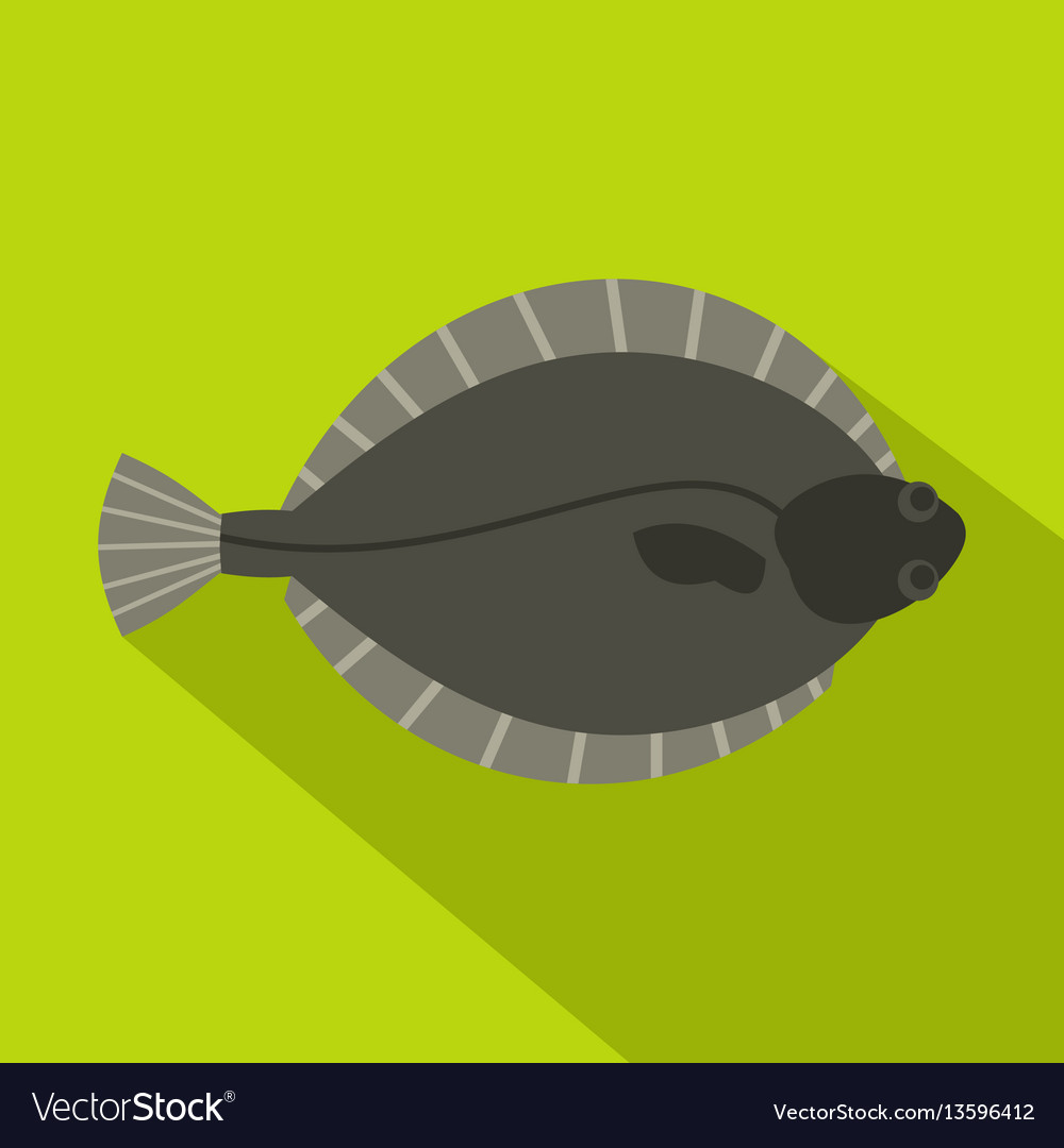 Fish Flatfish Flounder Ocean Vector Images 55