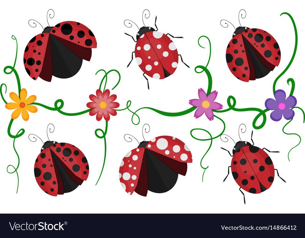 Ladybirds pattern