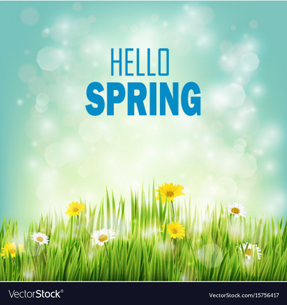 Spring background with flowers daisies in grass vector image izmirmasajfo