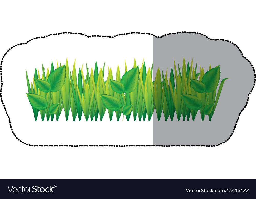 Color grass with leaves icon