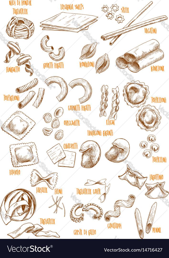 Sketch icons set of italian pasta variety
