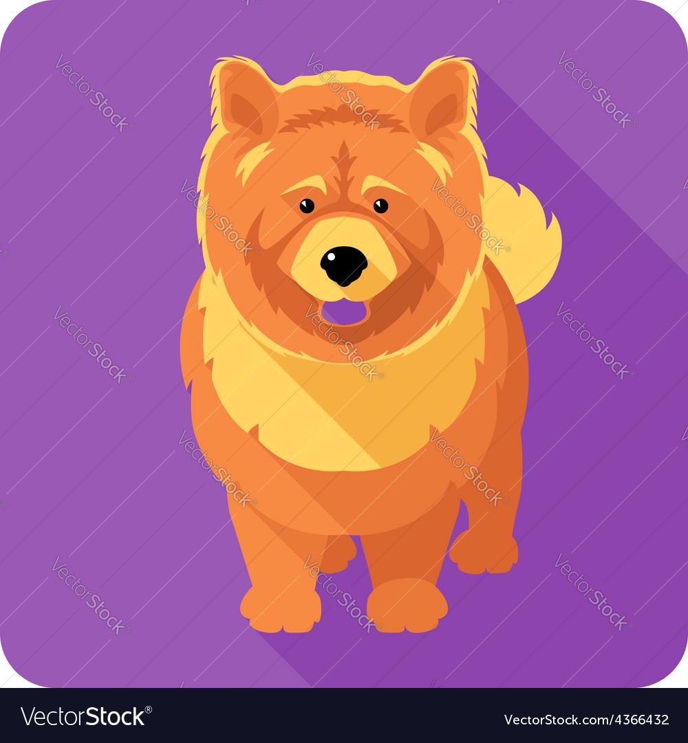 Dog chow-chow icon flat design