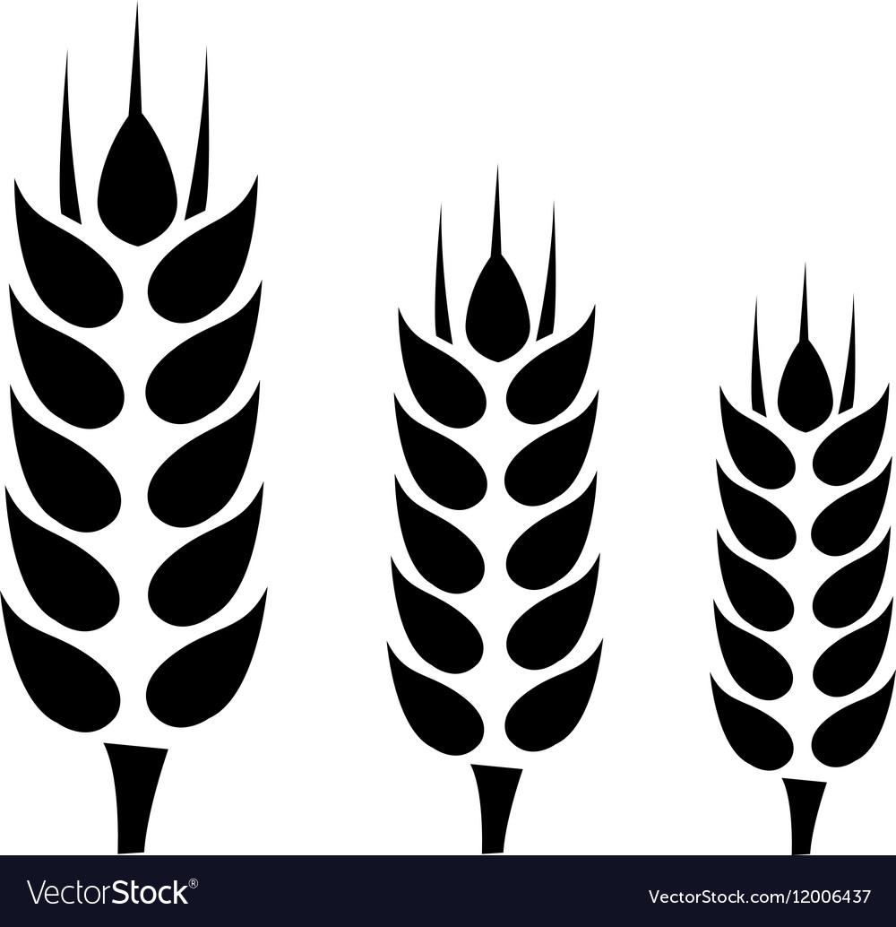 Wheat Icon Flat