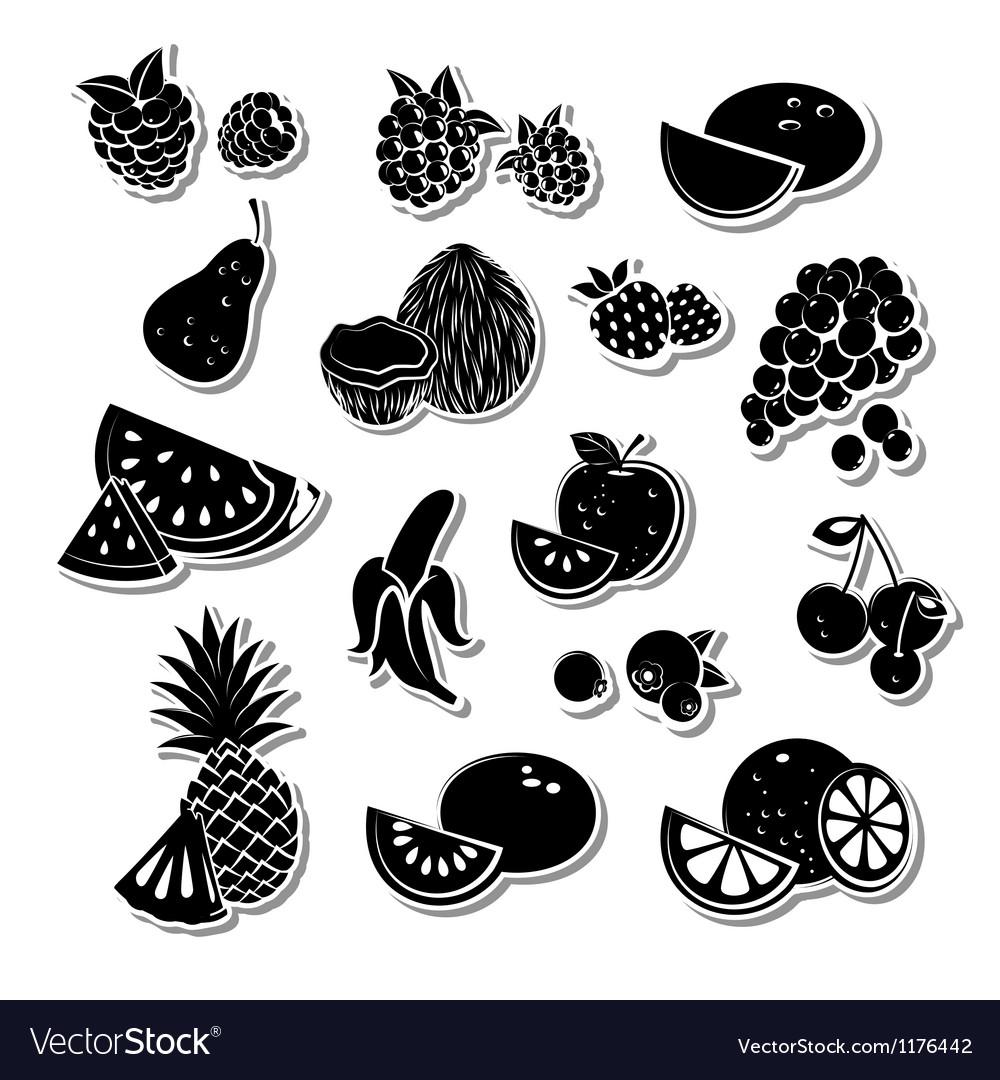 Retro fruit set vector image