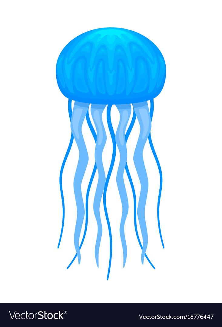 Blue medusa cartoon