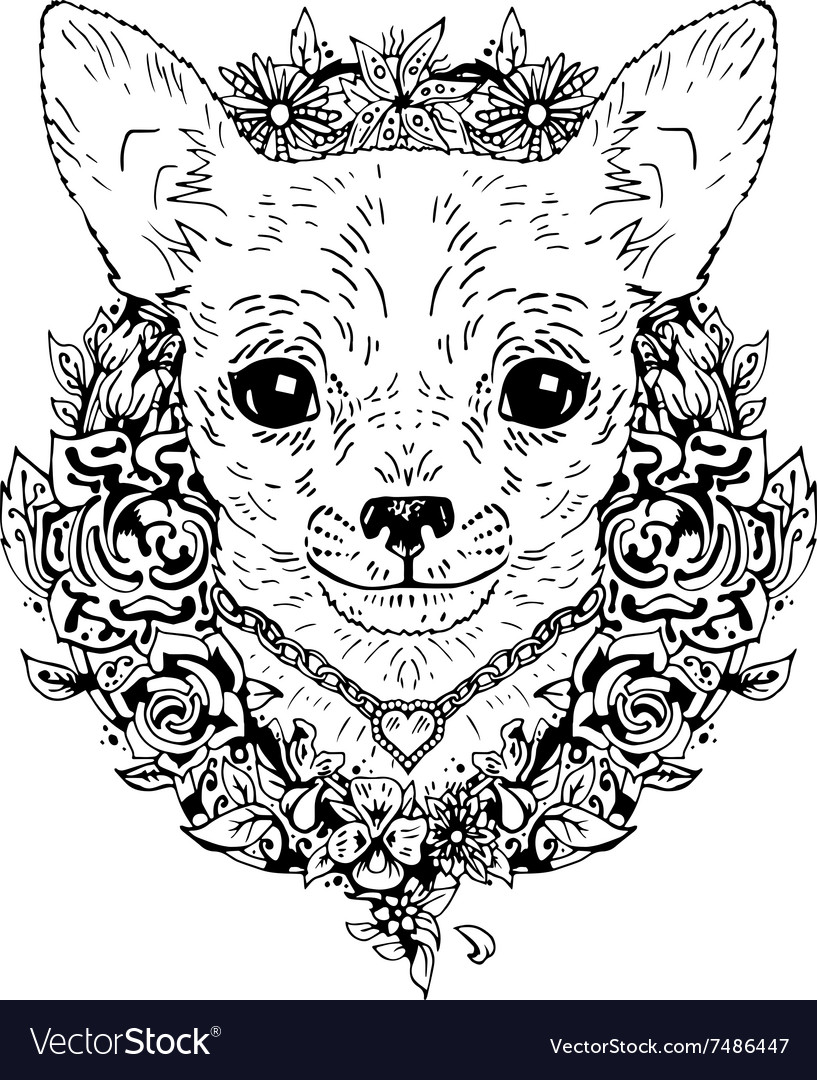 Chihuahua graphic dog abstract