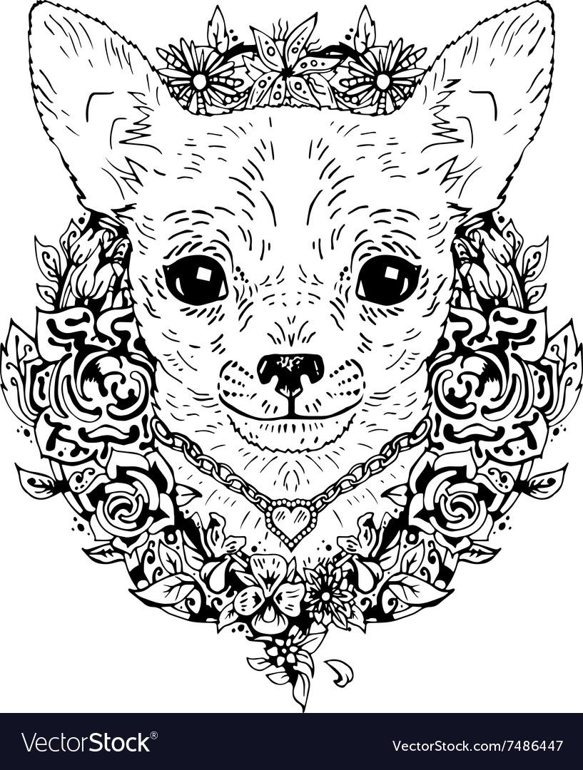 Chihuahua graphic dog abstract vector image