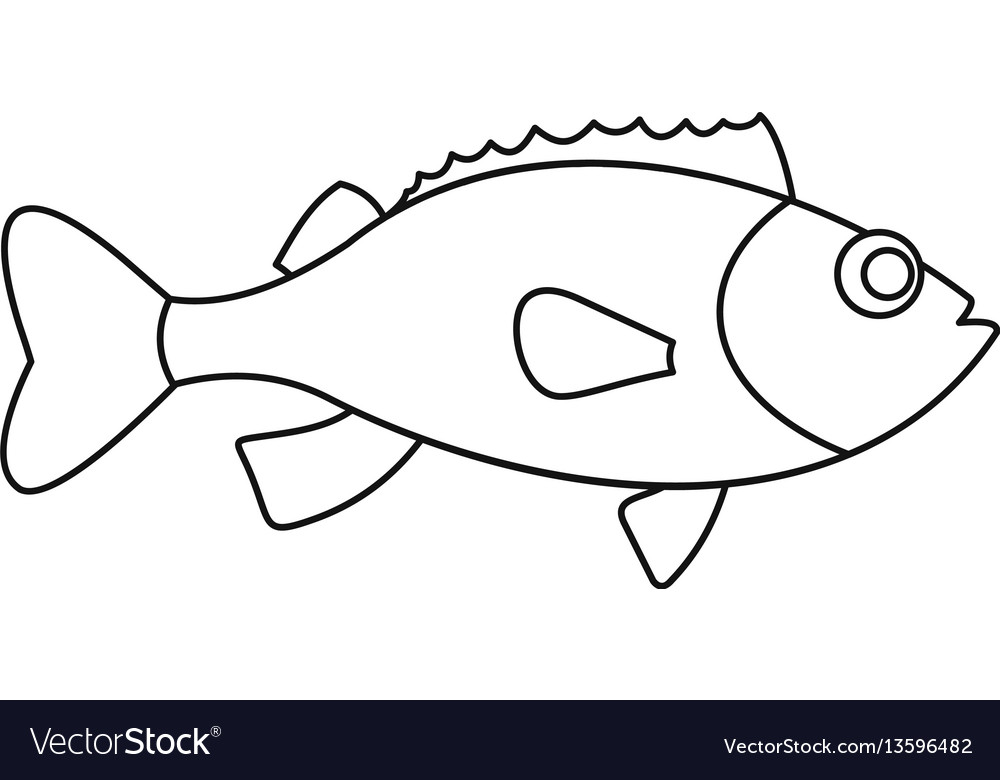Sea bass icon outline style vector image