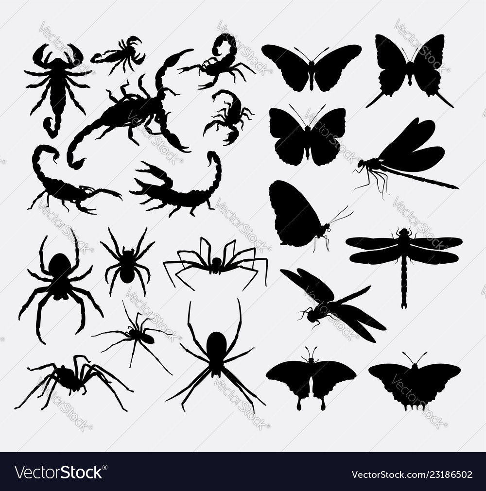 Scorpion butterfly dragonfly animal silhouettes