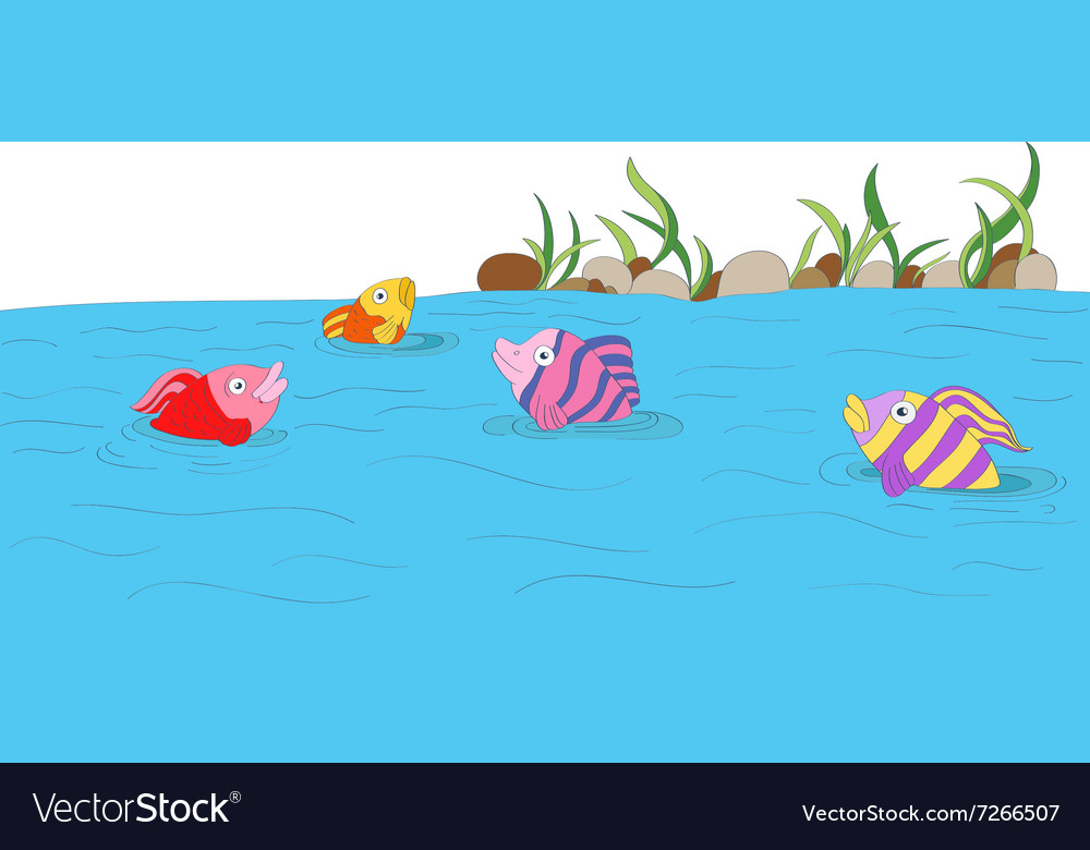 Cute colorful fishes