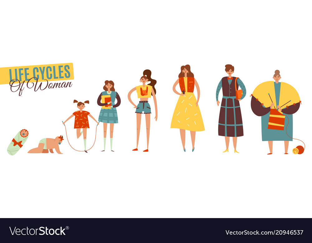 Life cycles of woman set