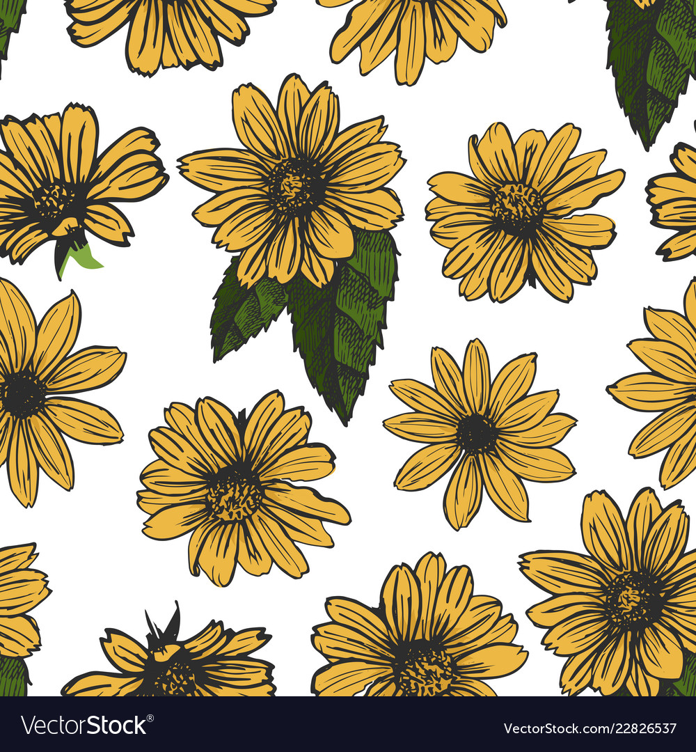 yellow flowers on white background seamless vector image vectorstock