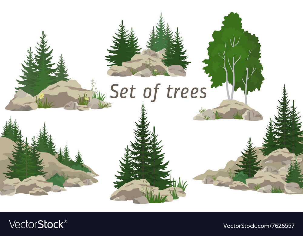 Landscapes with Trees and Rocks vector image