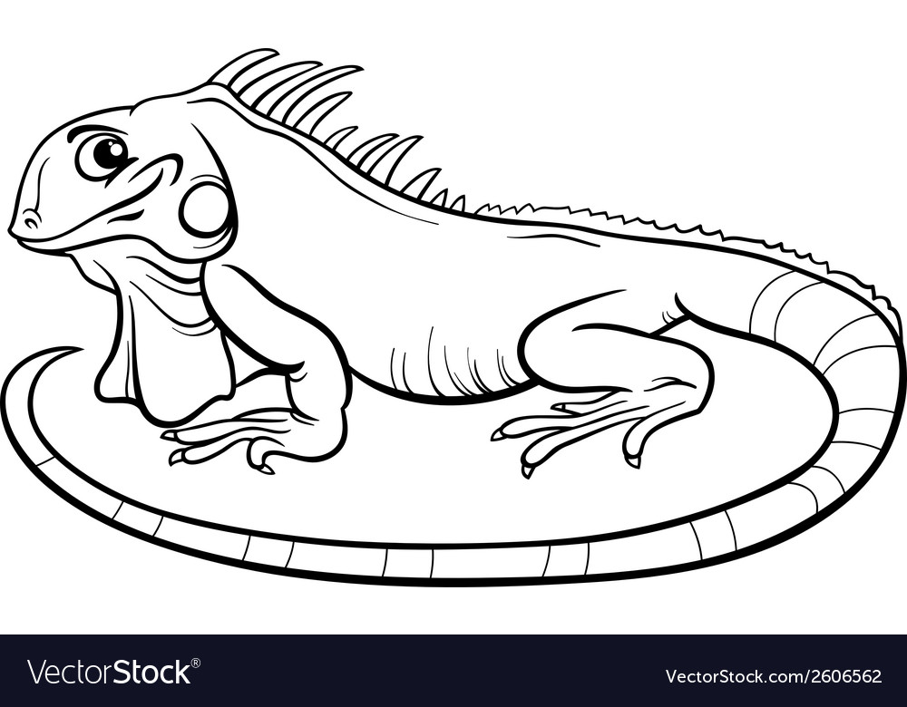 Pin by ColorNimbus on Iguana Coloring Pages | Coloring pages ... | 780x1000