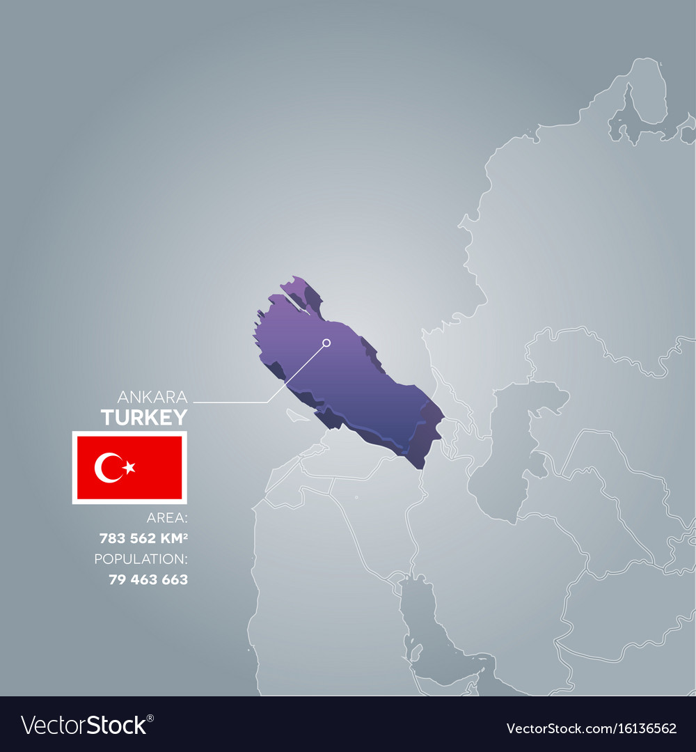 Turkey information map vector image