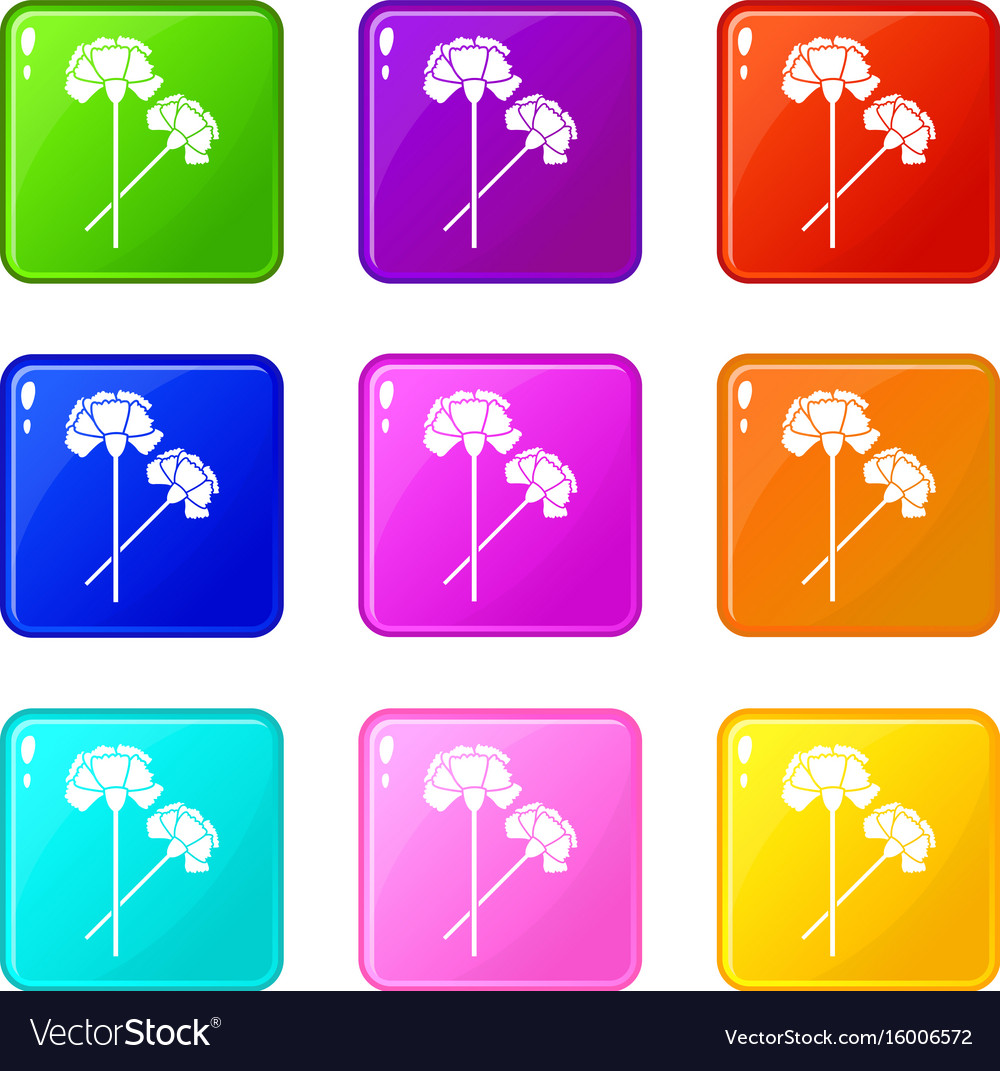 Carnation set 9 vector image