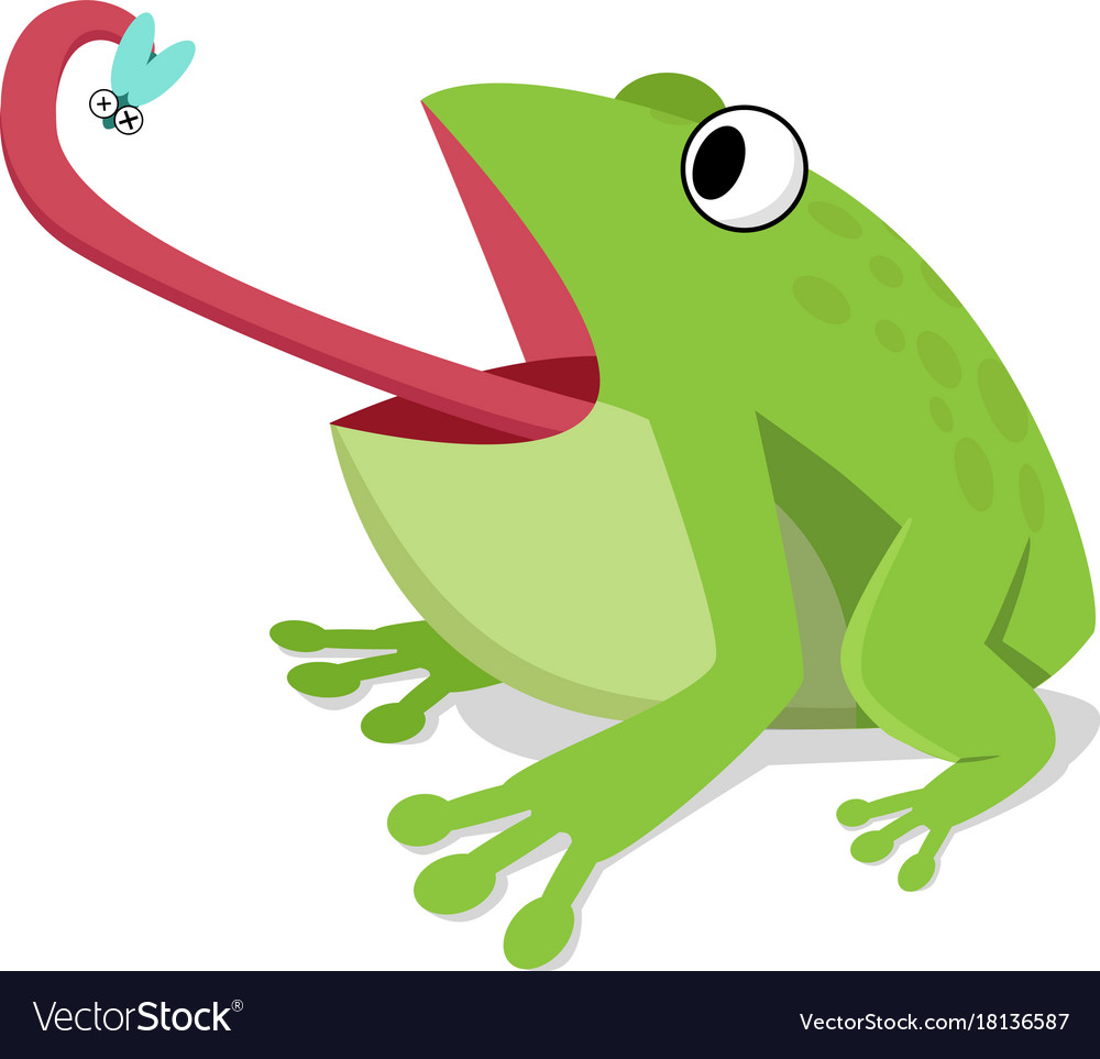 Green frog eat insect on white cartoon