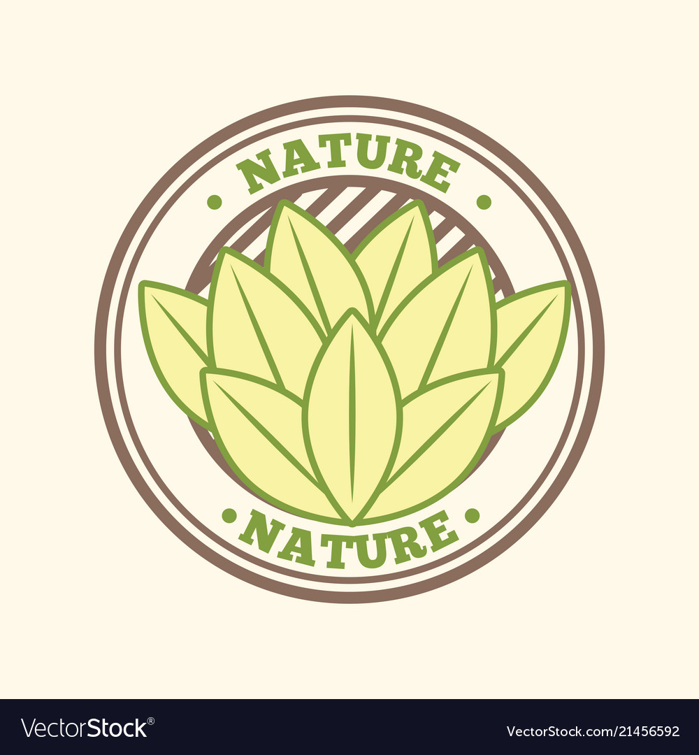 Food organic nature