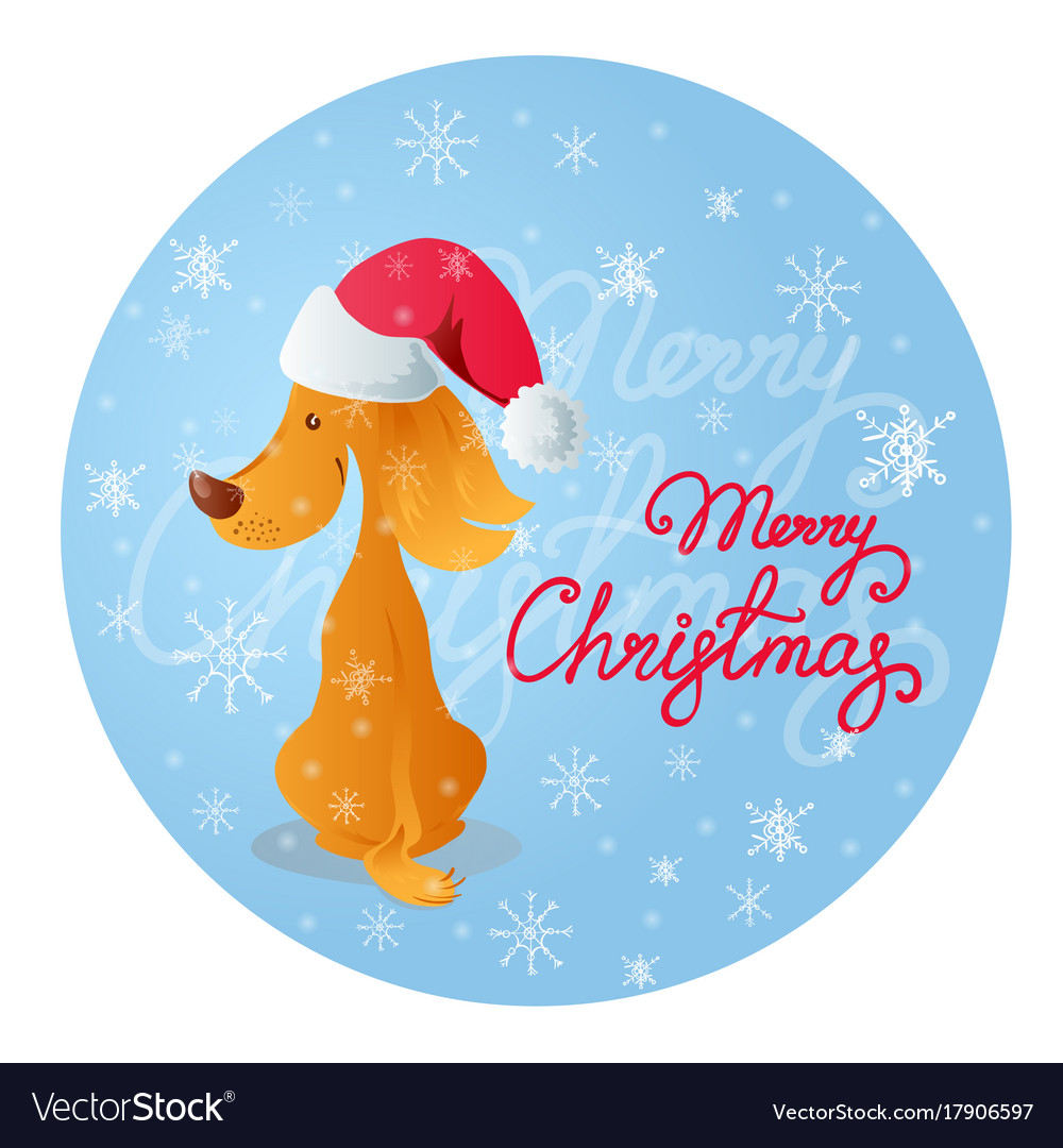 Cute sitting smiling yellow dog blue background vector image