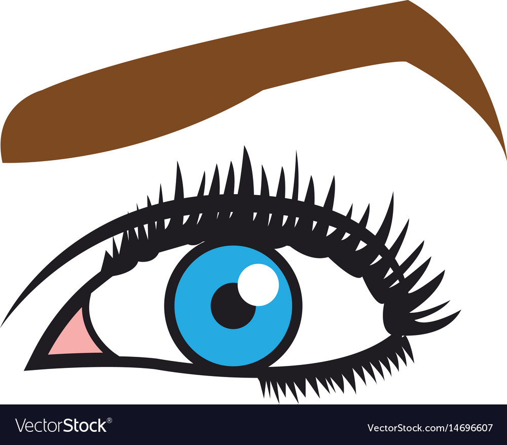 Female blue eyes mascara eyebrows eyelashes style vector image