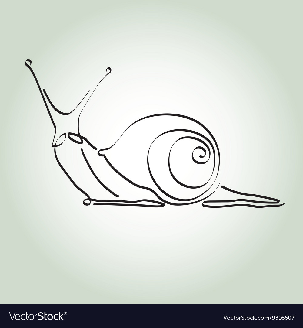 Snail in minimal line style