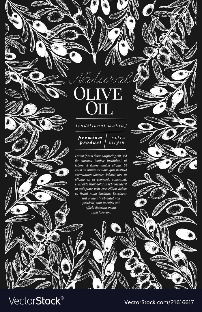 Olive tree banner template vintage
