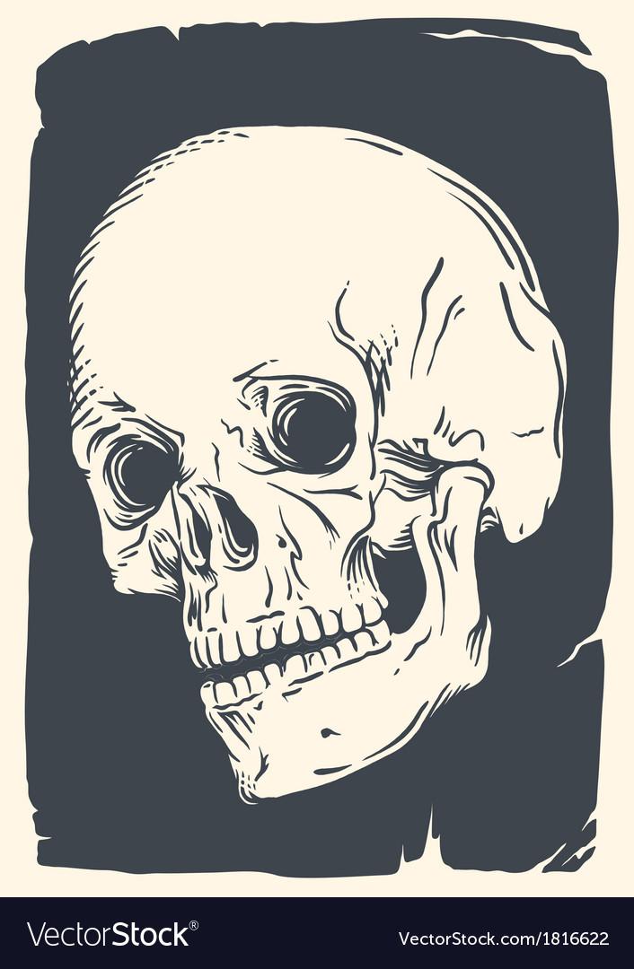 Isolated skull on vintage broken paper