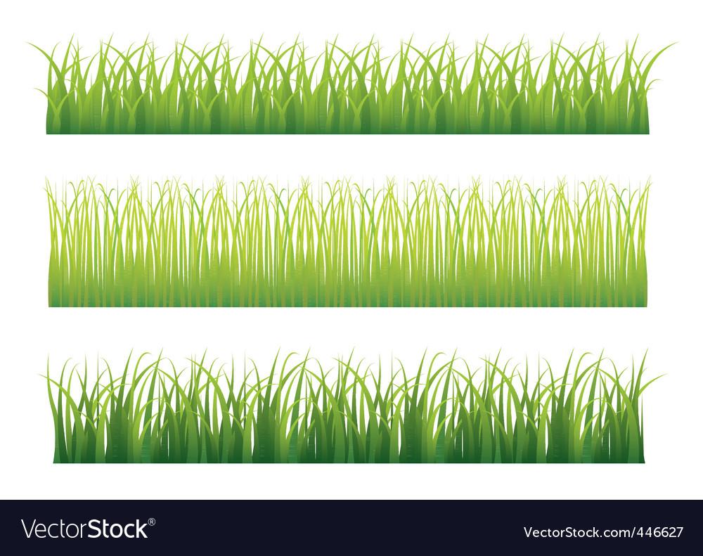Grass borders