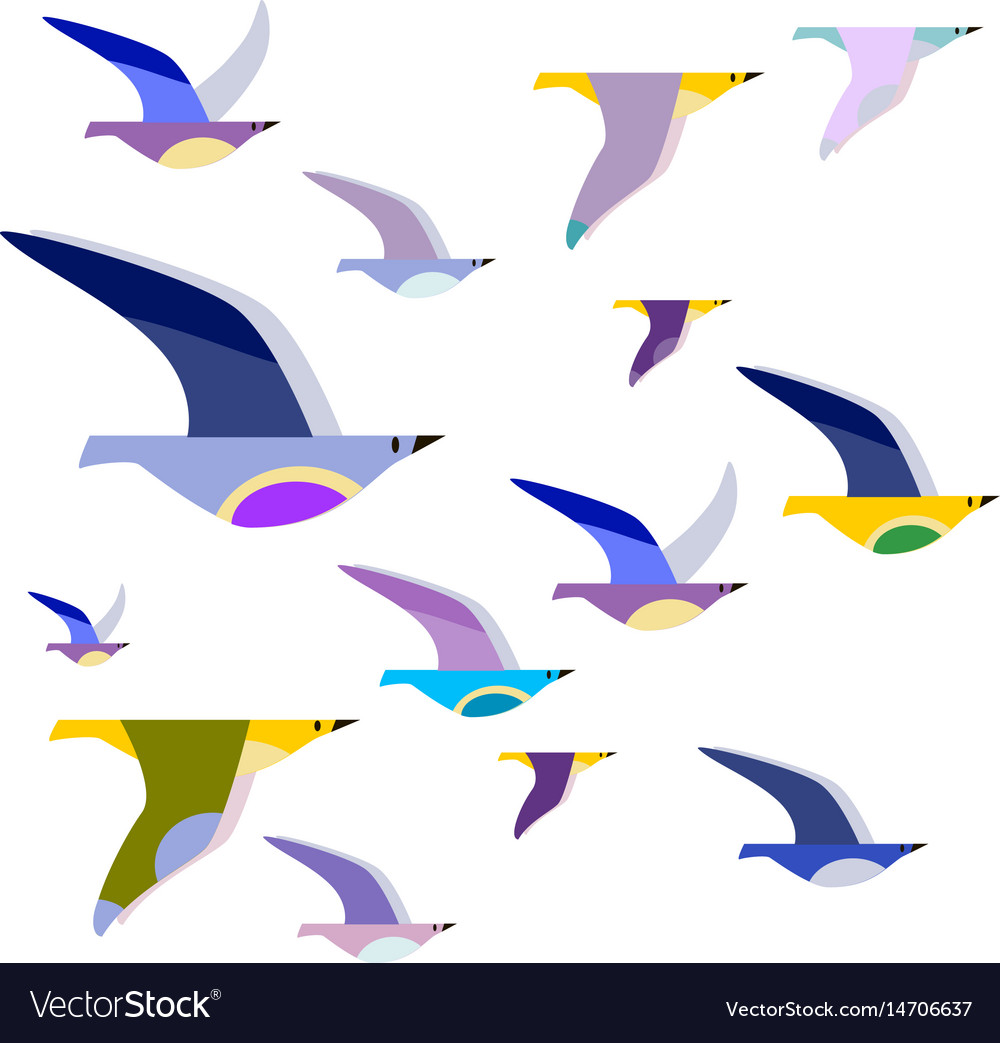 Colorful birds on wires