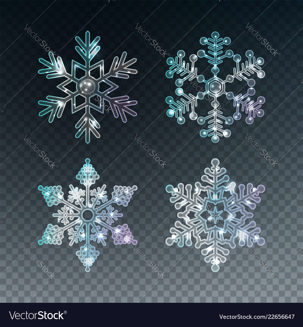 ae3122a312f8 Ice crystal snowflakes Royalty Free Vector Image