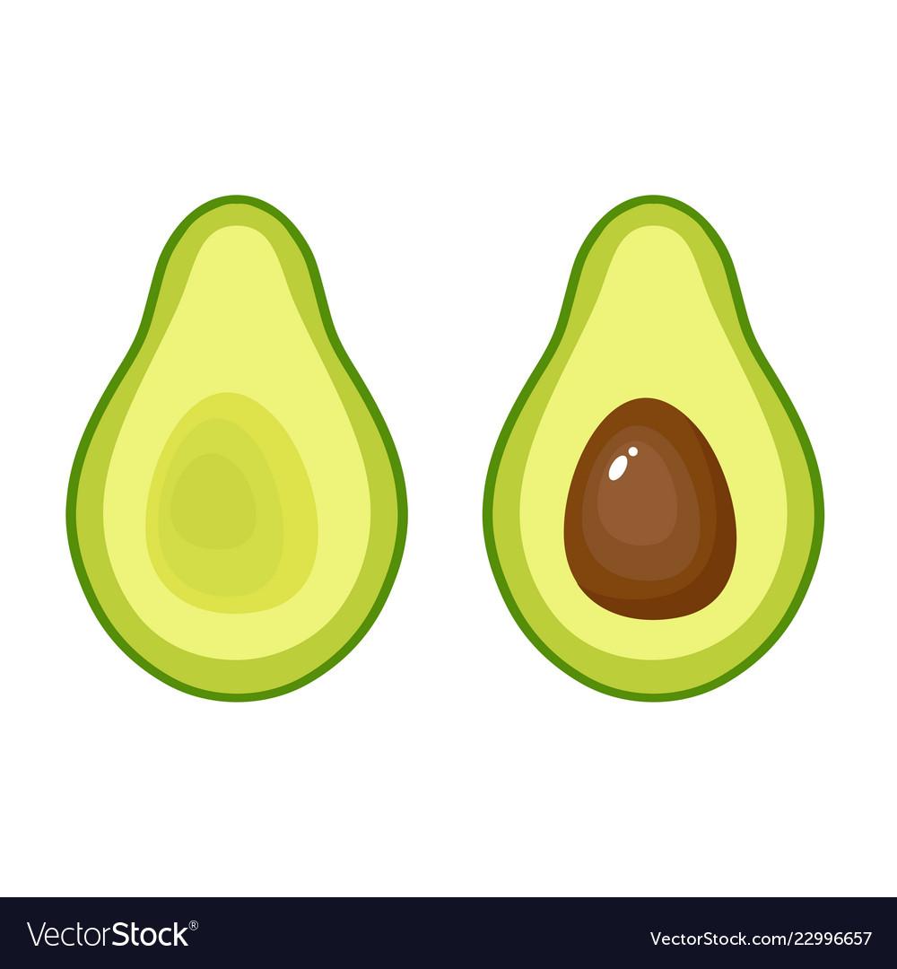 Avocado fruit icon on white