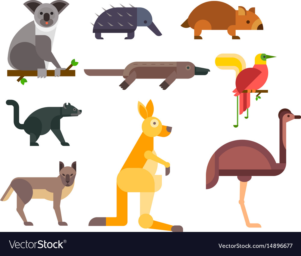 Australia wild animals cartoon popular nature