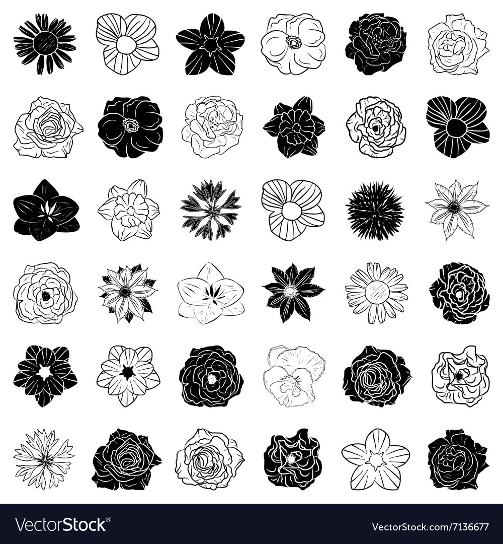 Set of hand drawn flowers abstract