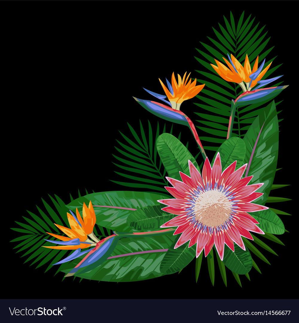 Tropical bouquet cornercomposition