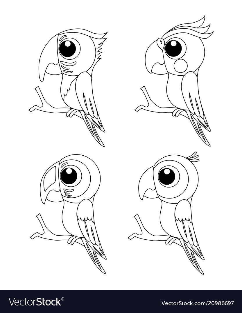 Colorless set of different cartoon parrots exotic