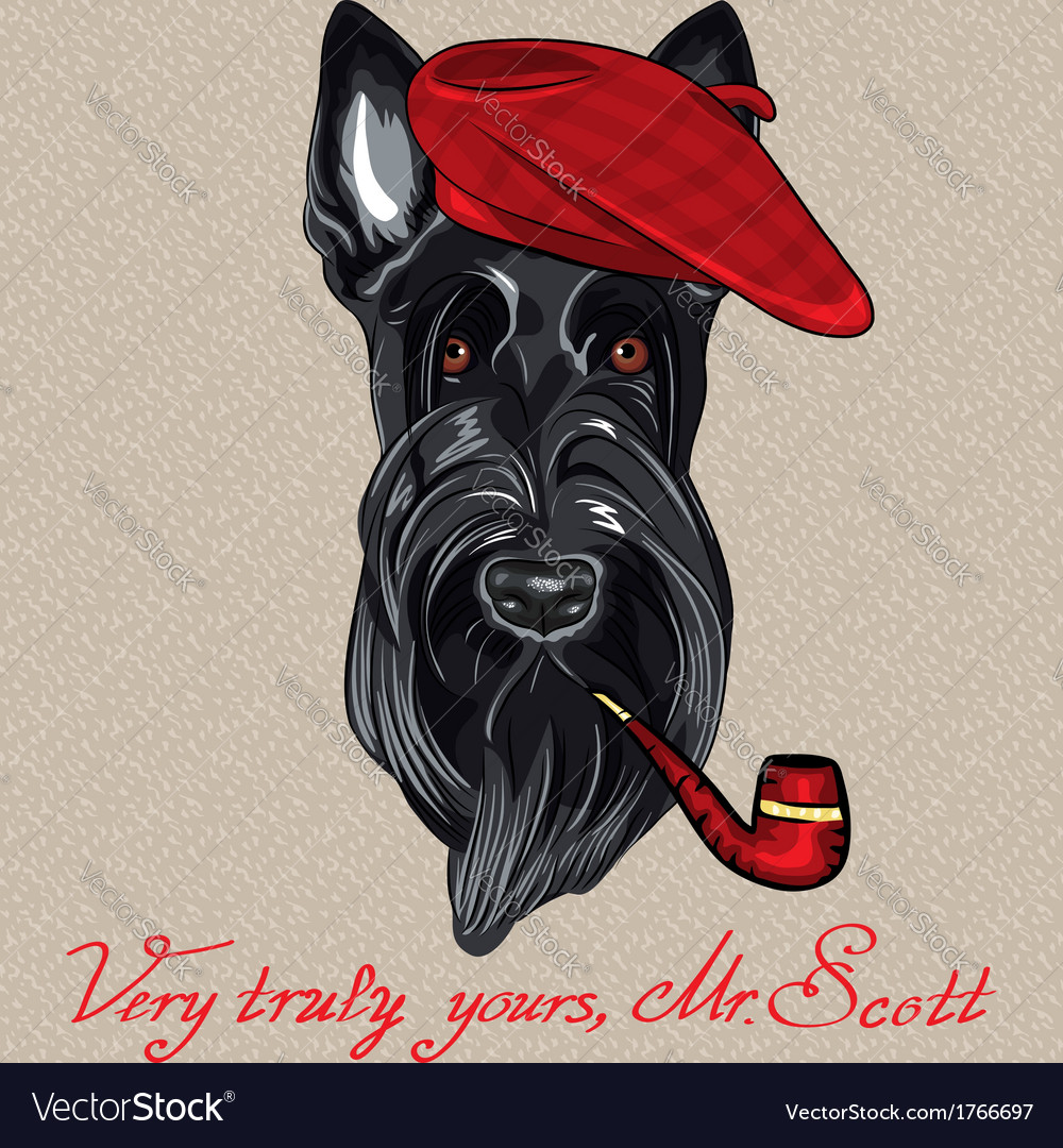 Hipster dog Scottish Terrier