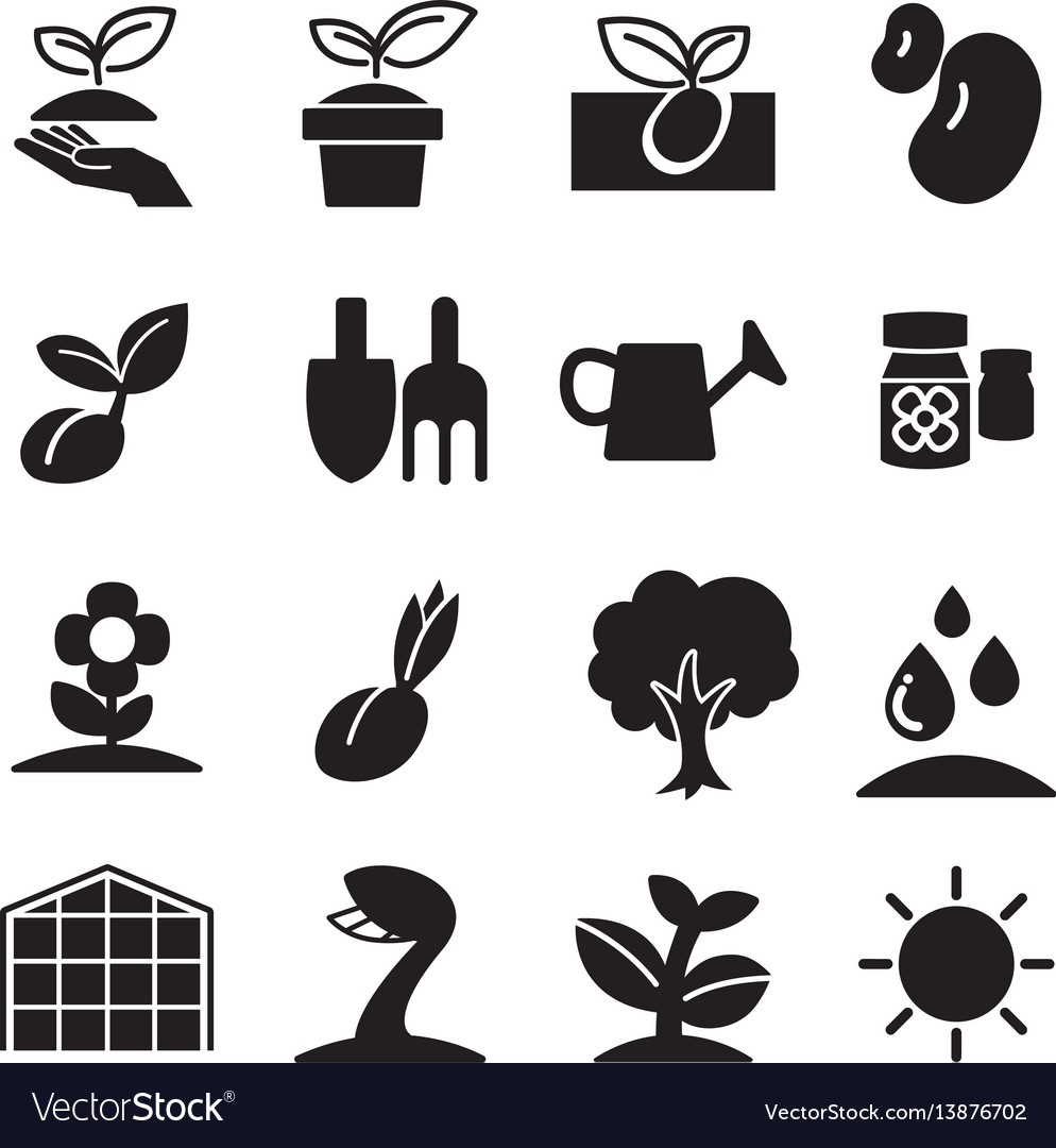 Cultivate plant grow icons set