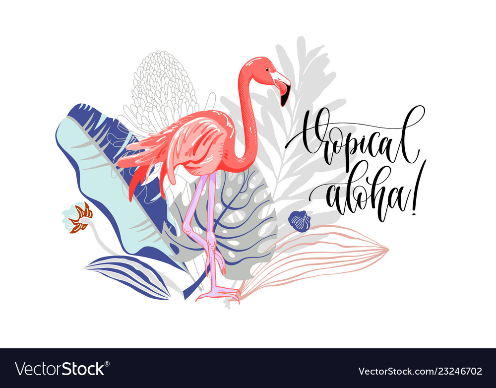 Tropical aloha - hand drawing slogan with flamingo