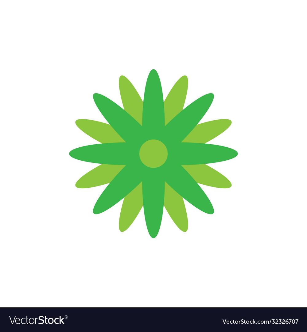 Floral nature icon decorative element design