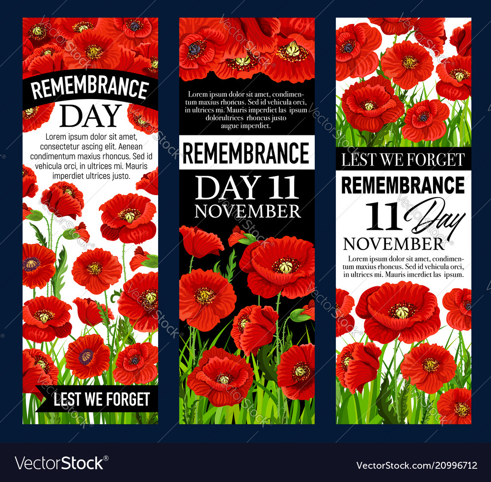 Poppy flower banner for remembrance day design vector image mightylinksfo