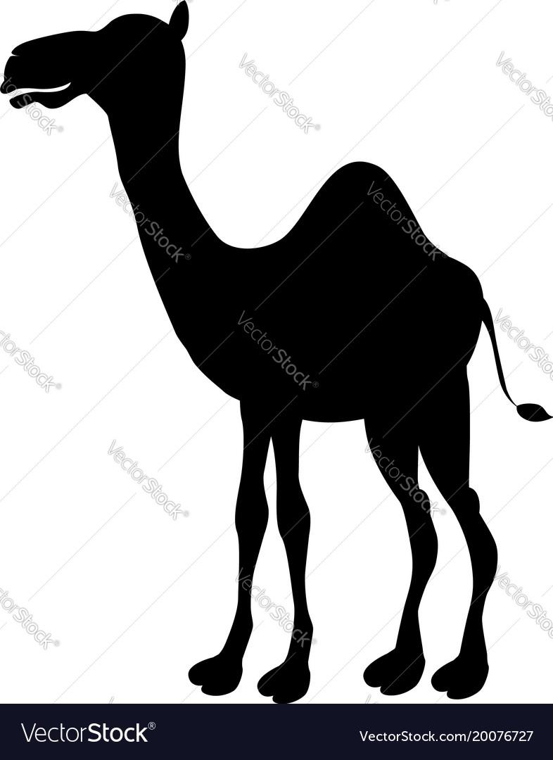 Cartoon silhouette camel icon cute funny