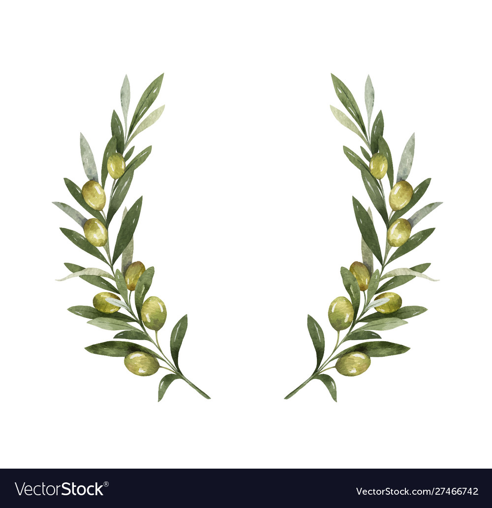 Watercolor wreath olive branches and
